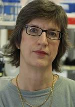 FU-Professorin Constance Scharff in Akademie der Wissenschaften gewählt