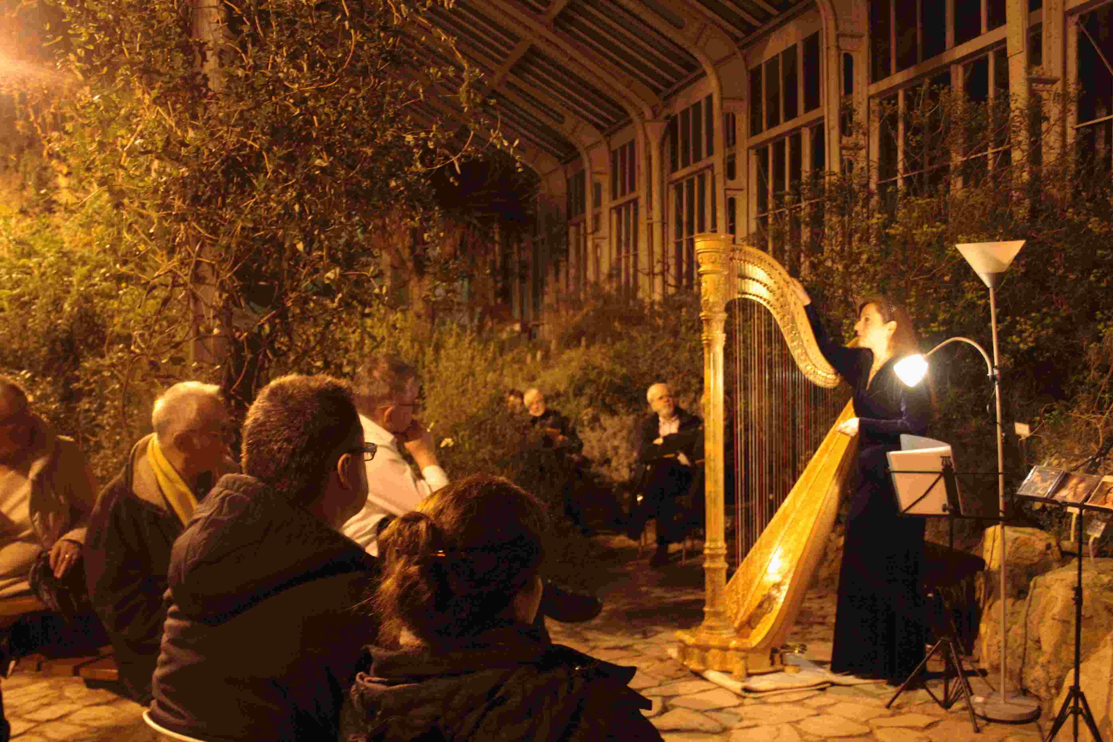 Sinfonie unter Palmen im Botanischen Garten