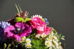Blumengrüße zum Frauentag – StadtrandNachrichten und Blumen Salzmann verlosen drei Sträuße