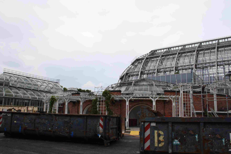 """Dem """"Energiefresser"""" gehts an den Kragen: Victoria-Haus im Botanischen Garten wird saniert"""