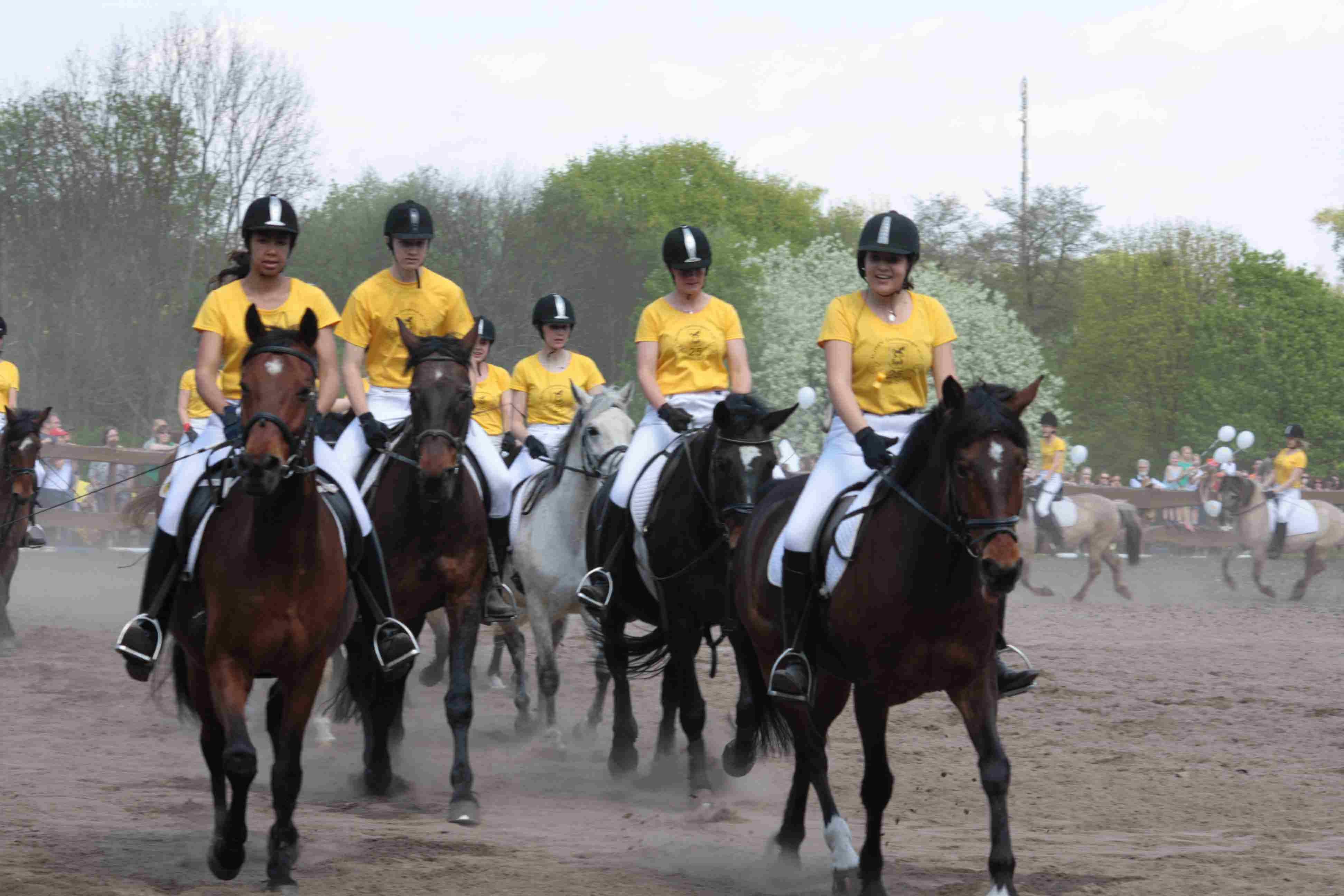 Schnupperkurse und großes Sommerfest für kleine und große Pferdefreunde in Zehlendorf