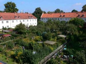 Die Gartenstadt Zehlendorf wird in diesem jahr 100 Jahre alt und ist Denkmal des Monats November. Foto: Denkmalschutzbehörde