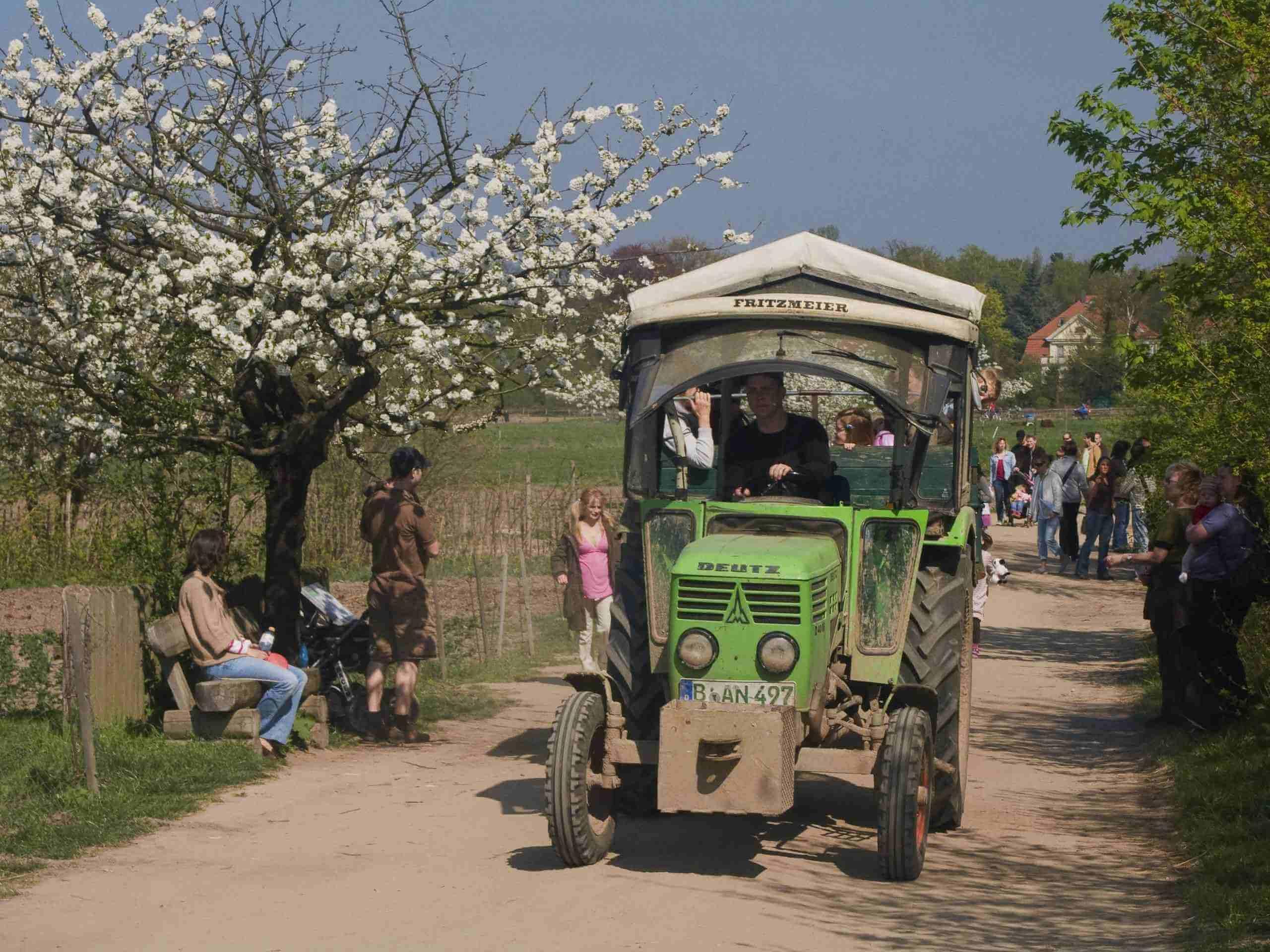 Frühlingsfest in der Domäne Dahlem