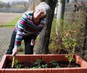 Jana Pofallik kümmert sich um die schon gepflanzten Erdbeeren und Johannisbeersträucher. Foto: Gogol