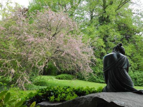 Mehr als 30 Veranstaltungen zu Ehren Lennés: Park Glienicke wird 200 Jahre alt