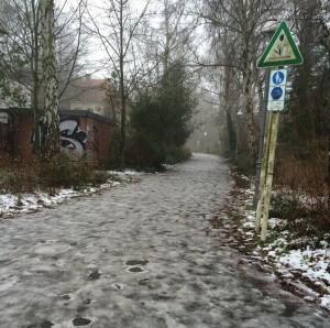 Eine Leserin machte ein Bild vom ungesäumten Schulweg der Mühlenau-Grundschule und zeigte sich wütend ob des Zustandes. Foto: privat