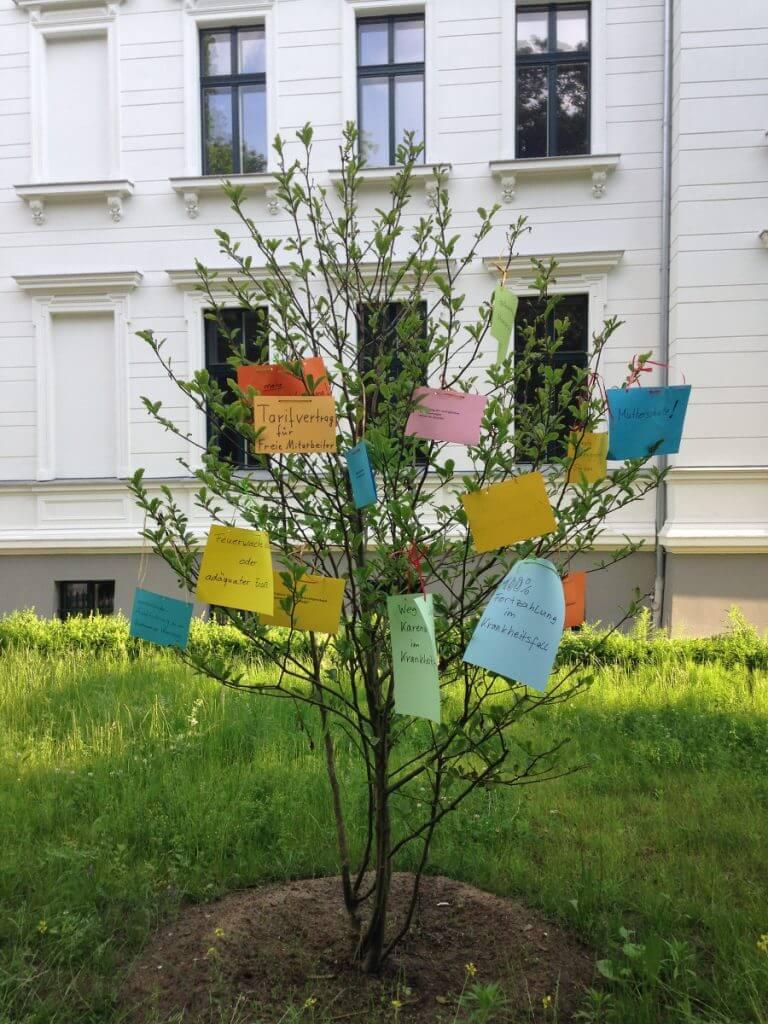 Die Magnolie vor der Musikschulvilla schmückten die Musikschullehrer mit ihren Wünschen und Forderungen. Foto: Strakhof