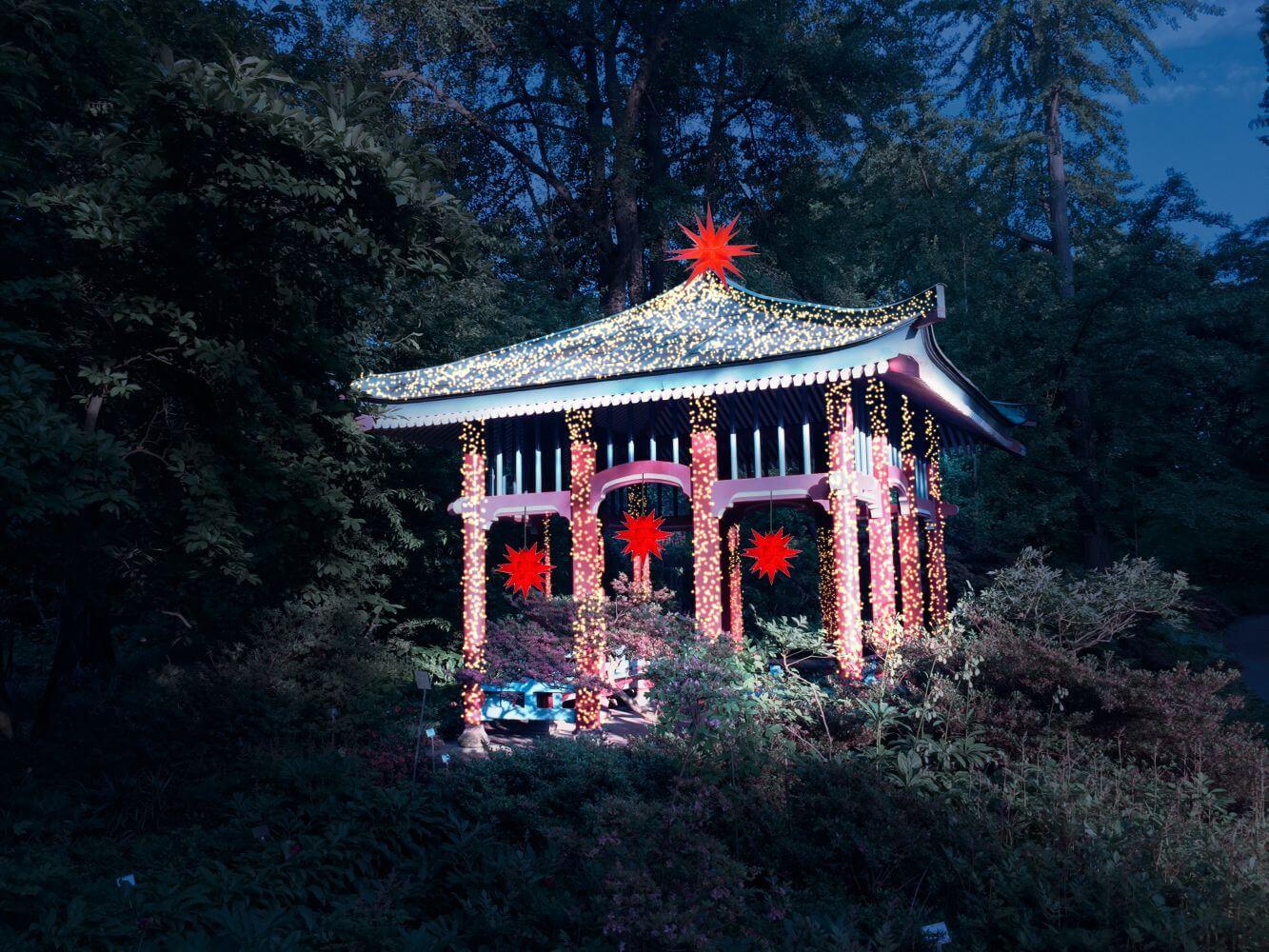 christmas garden berlin der botanische garten wird zum weihnachtlichen m rchenland. Black Bedroom Furniture Sets. Home Design Ideas