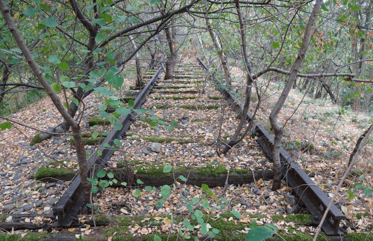 Abbildung 1. Bahndamm der Doughboy City mit Gleis, Zustand September 2016. Foto: C. Noack