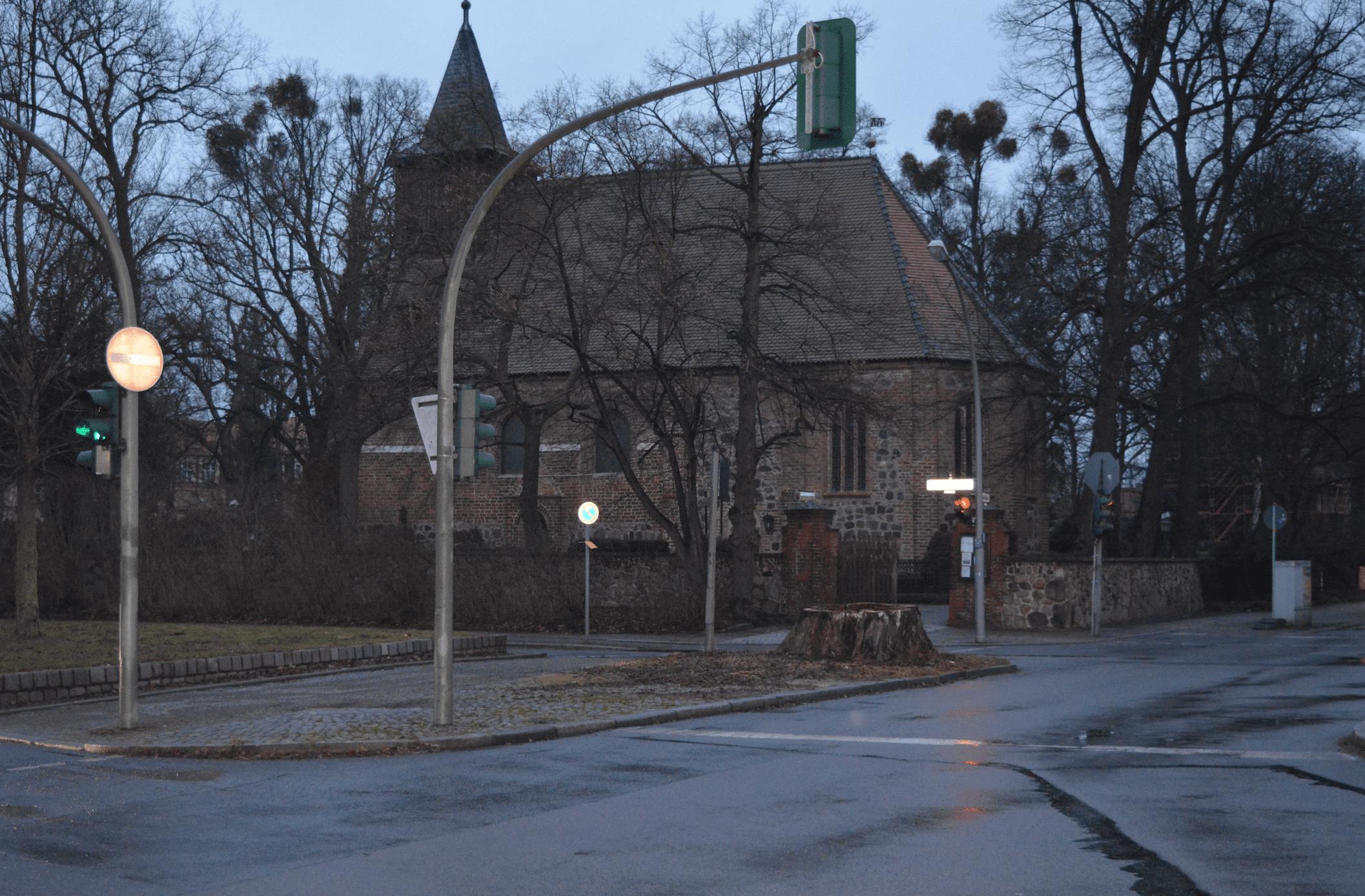 Fällung eines Naturdenkmals in Dahlem