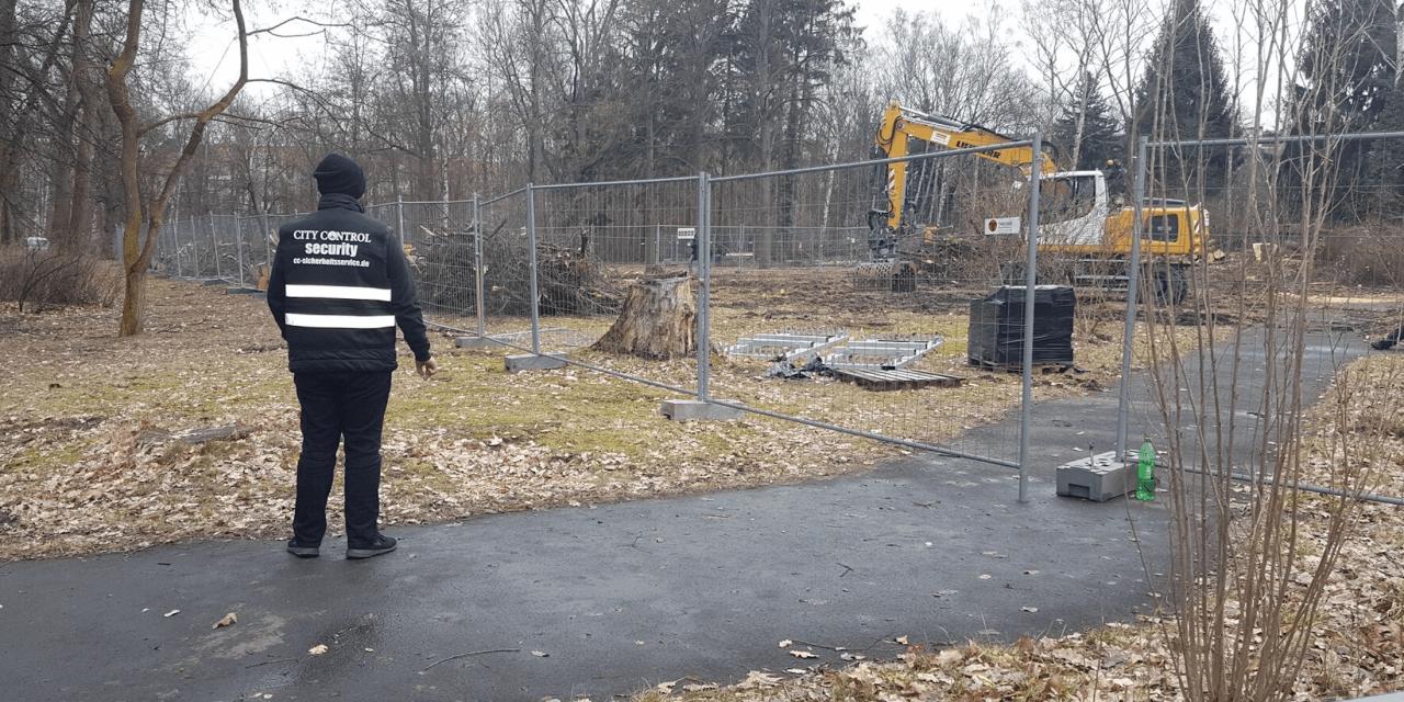 Proteste am Leonorenpark: Baumfällungen in Lankwitz begonnen