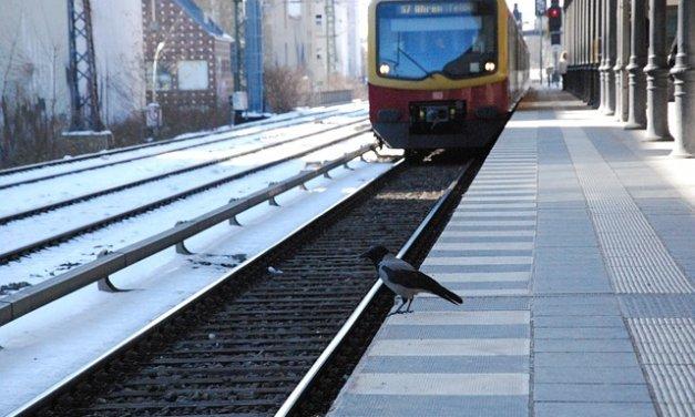 Umsteigen bitte! Am Bahnhof Wannsee wird in den Sommerferien gebaut