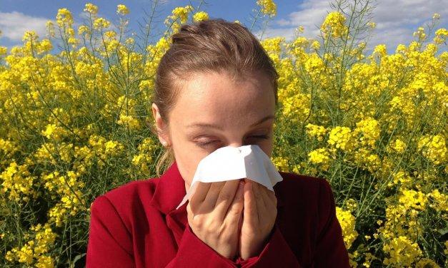 """""""Es liegt was in der Luft!"""" – Patientenakademie zu Allergien im Bethel-Krankenhaus"""