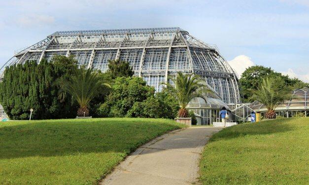 Botanischer Garten: Fertig saniertes Victoriahaus bleibt wegen Personalmangels geschlossen