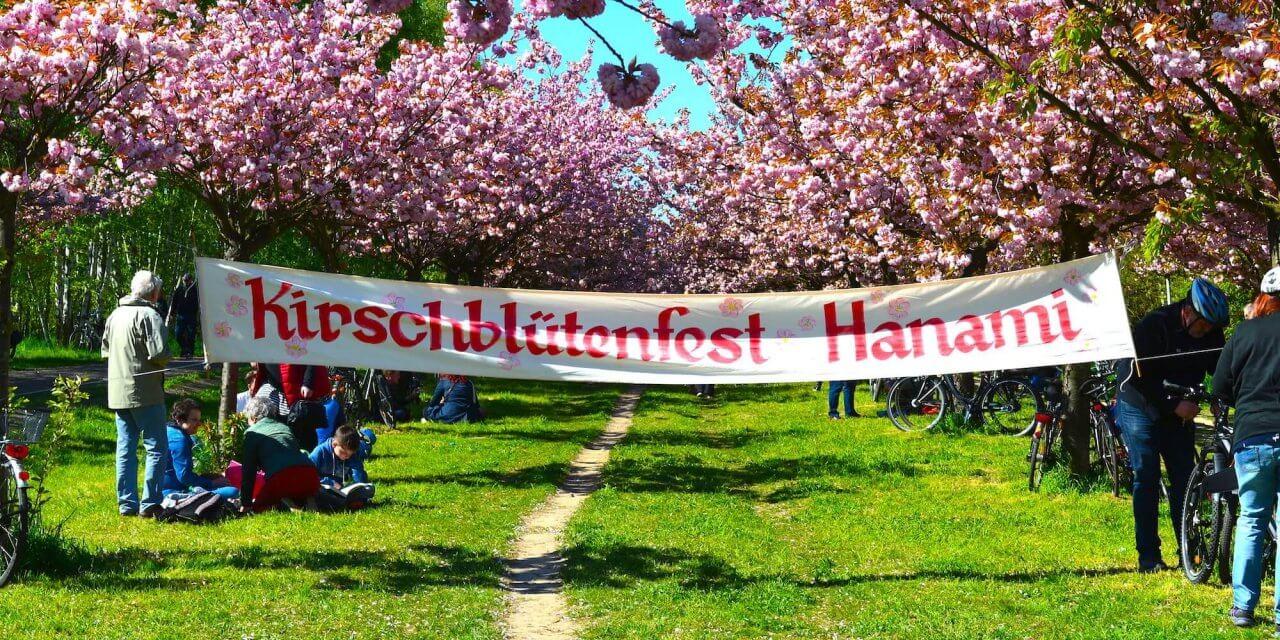 Japanisches Kirschblütenfest auf dem ehemaligen Grenzstreifen