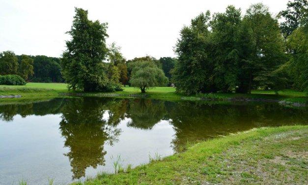 Schloßsee im Landschaftspark Glienicke ist nach 100 Jahren wieder da