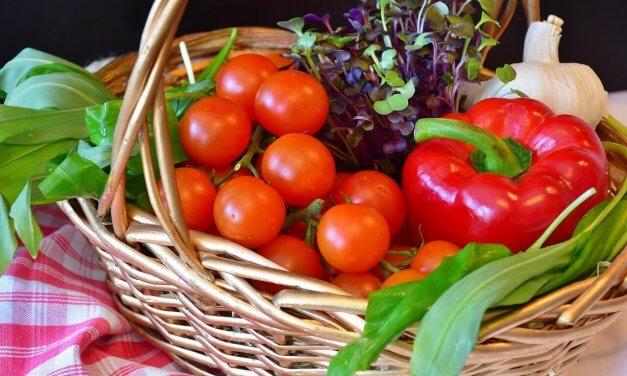 Köstlichkeiten aus der Region: Brandenburger Spezialitätenmarkt auf der Domäne Dahlem