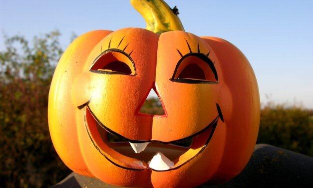 Happy Halloween im Botanischen Garten