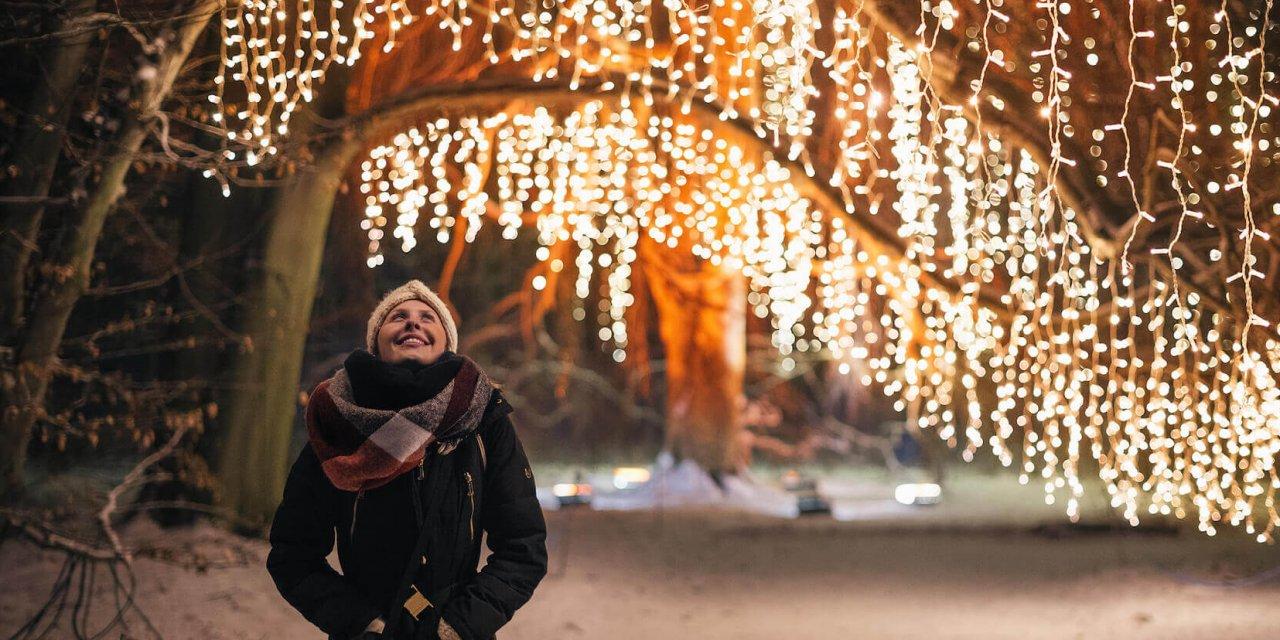 Christmas Garden in Lichterfelde: Der Botanische Garten leuchtet wieder