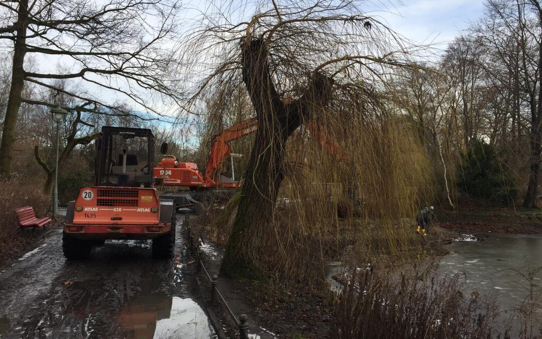 Teiche im Stadtpark Steglitz werden saniert