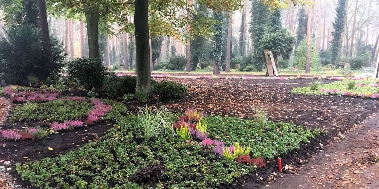 Waldfriedhof Zehlendorf bekommt ersten Memoriam-Garten