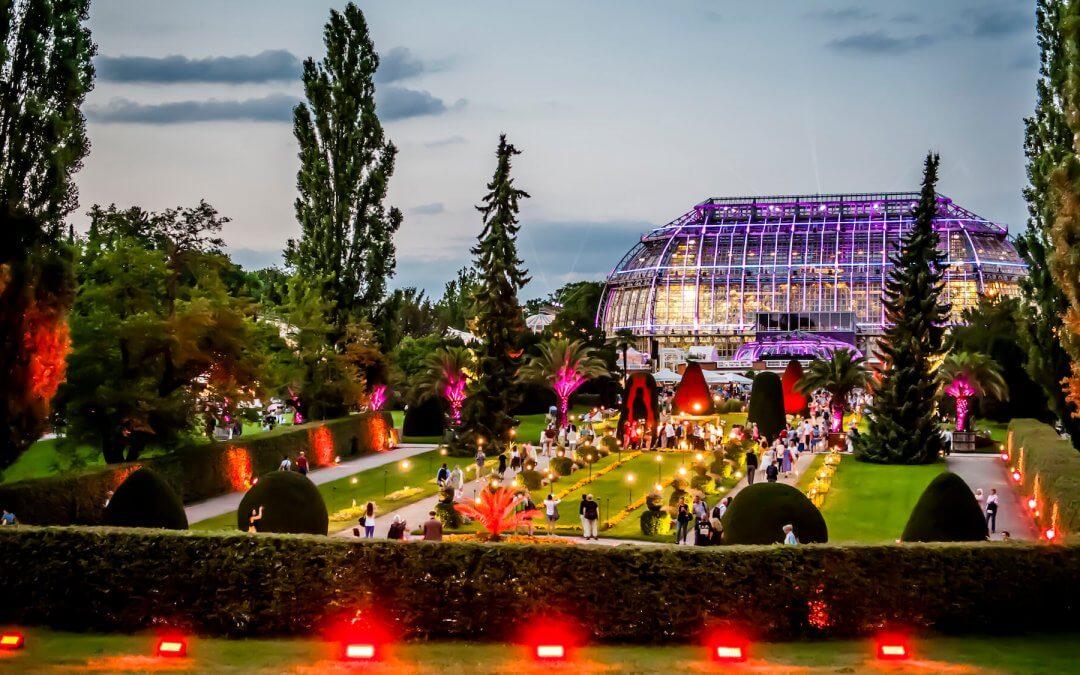 Spektakuläre Inszenierung: Botanischer Garten lädt wieder zur Botanischen Nacht ein