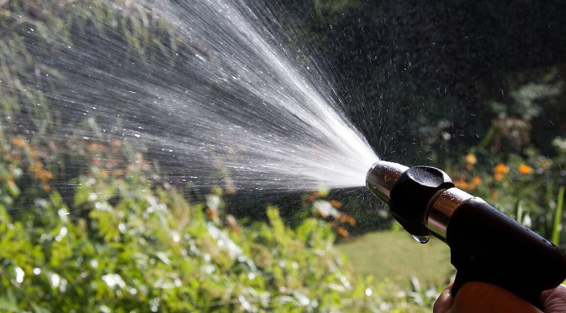 Jeder Eimer hilft: Bezirk ruft Bürger zum Wässern auf