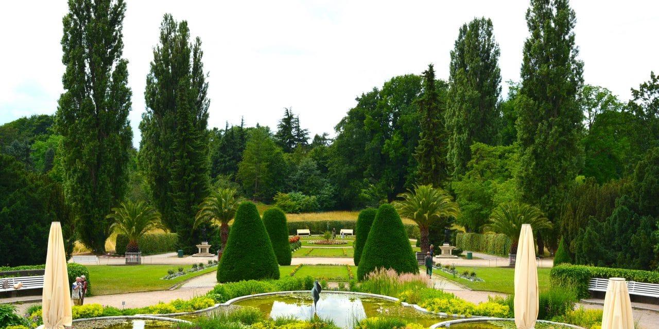 Botanischer Garten Berlin bereitet Öffnung vor