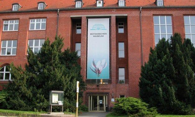 Das Botanische Museum – Der Pflanzenvielfalt erster Teil