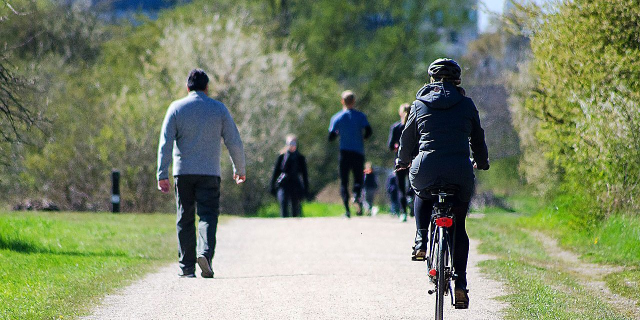 Radfahren für alte Hasen