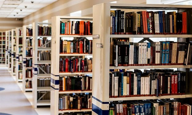 Junior-Bibliothek – Sommerprojekt der Stadtbibliothek Steglitz-Zehlendorf