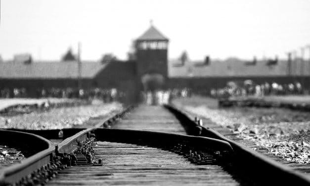 SHOAH – Wie jüdische Filmemacher den Massenmord erzählen