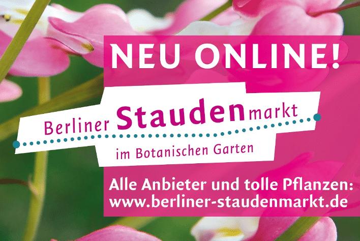 Berliner Staudenmarkt findet doch statt