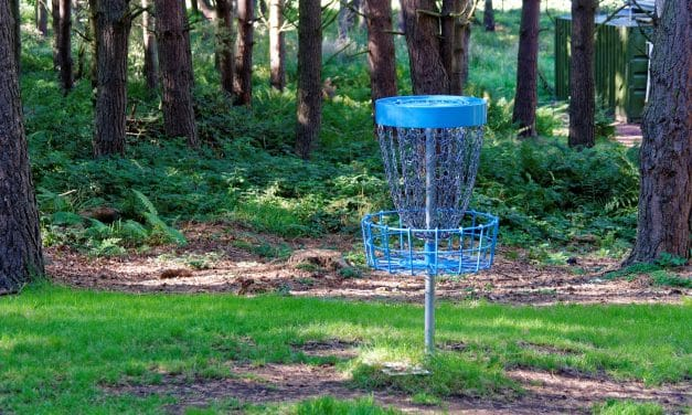 Discgolf: Neuer Parcours im Schlosspark Lichterfelde