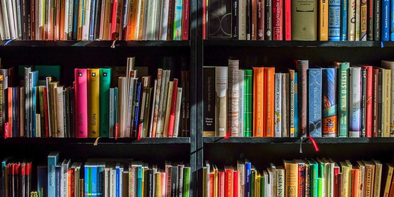 berlin-Familie.de präsentiert Buchtipps der Buchhandlung Schwericke