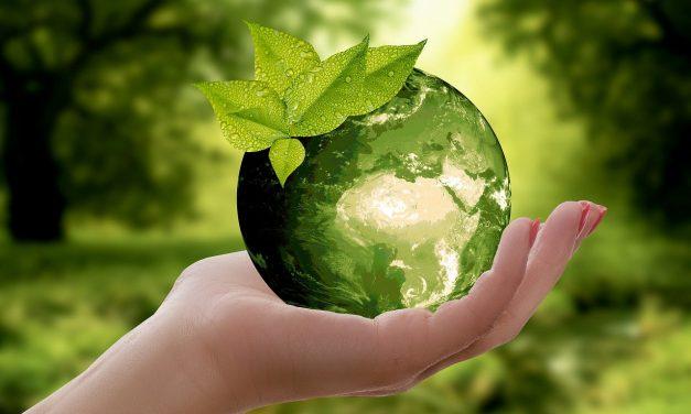 Gesucht: Gewerbe für die Aufnahme in den Zero-Waste- und Reparaturführer